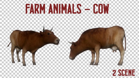 Thumbnail for Farm Animals - Cow - 2 Scene