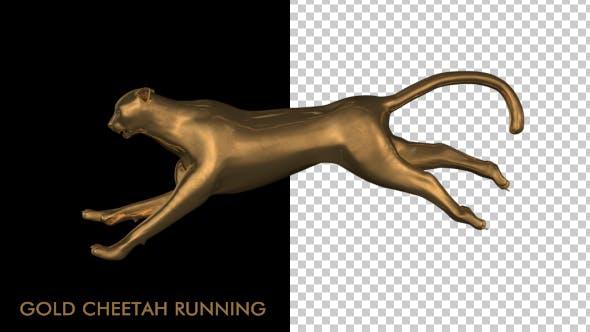 Thumbnail for Gold Cheetah Running