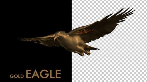 Gold Eagle Logo Animation
