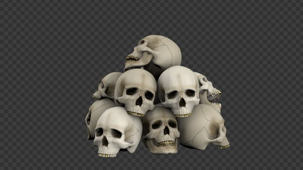Thumbnail for Skulls