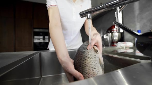 Thumbnail for The Cook Washes Fish, Chef Prepares Fish for Cooking, Dishes with Fish, Diet and Healthy Food