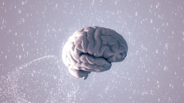 Thumbnail for Animation of the Human Brain with Visual Effects HD
