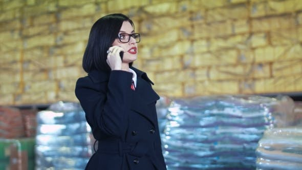 Thumbnail for Businesswoman Talking Phone in Warehouse