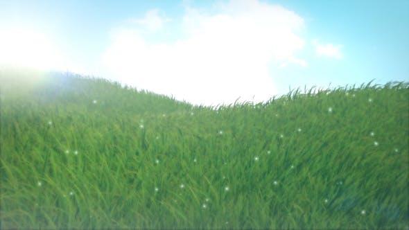 Thumbnail for Grass
