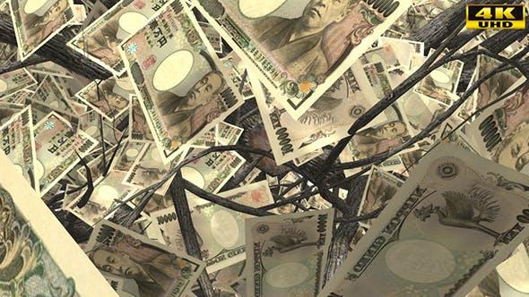 Thumbnail for Top Down Japanese Yen Money Tree