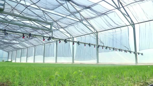Thumbnail for Watering Machine Irrigating Plants in Greenhouse. Agricultural Equipment