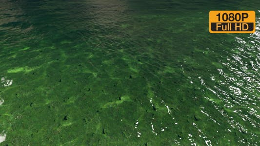 Thumbnail for Clear water surface and below