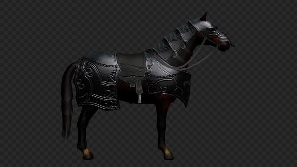 Thumbnail for Medieval Horse