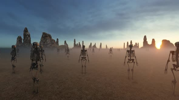 Thumbnail for Skeleton Army