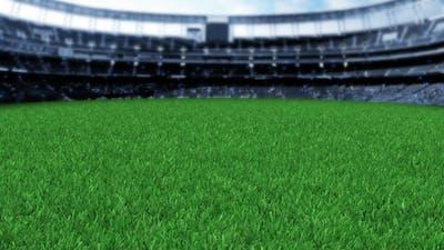 Grass Stadium