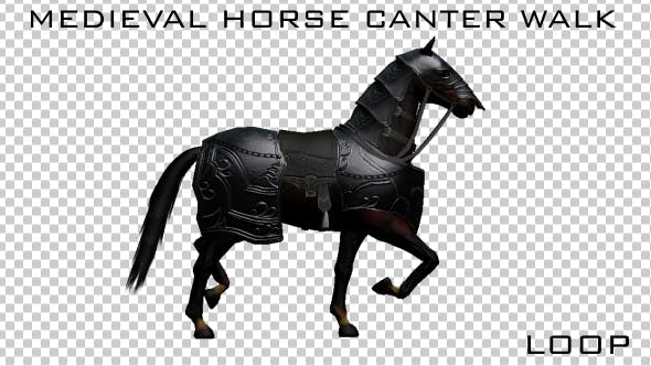 Thumbnail for Medieval Horse Canter Walk