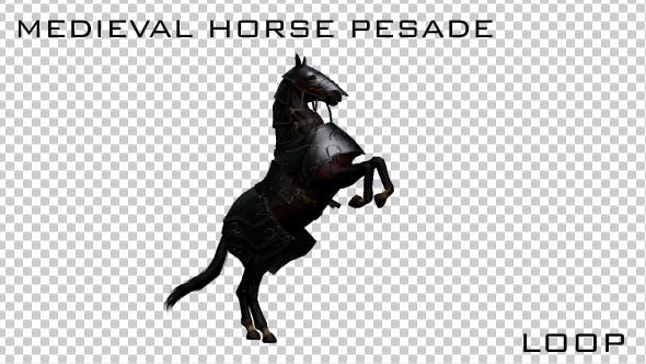 Thumbnail for Medieval War Horse Pesade