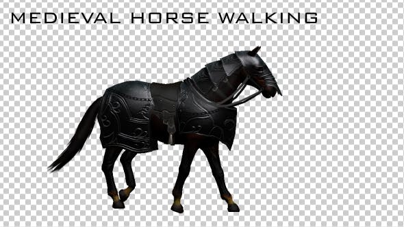 Thumbnail for Medieval War Horse Walking