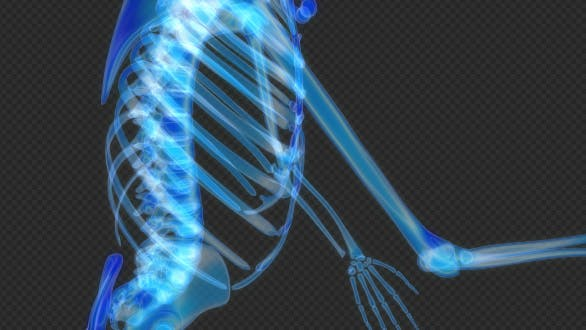 Thumbnail for Skeleton Dancing Hologram Hud Loop