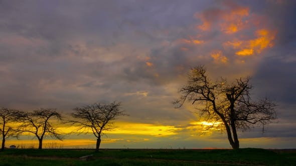 Thumbnail for Dramatic Sunset Sky