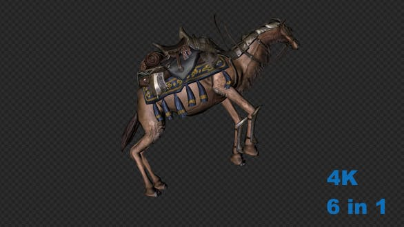 Thumbnail for A Camel With A Saddle Walk Run Stop And Forefoot Lift Leg And Screaming Pack 6 In 1