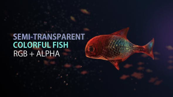 Thumbnail for Lingering Semi-transparent Colorful Fish