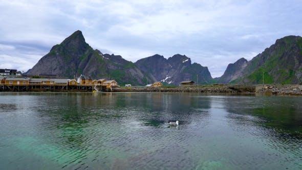 Thumbnail for Lofoten Archipelago Islands