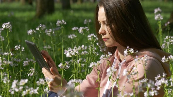 Thumbnail for Woman Browses Internet in Tablet Sitting on Field