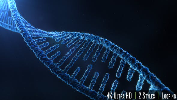 Thumbnail for DNA Molecule Structure 4K