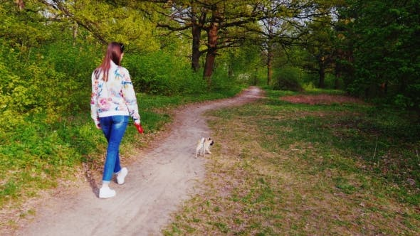 Thumbnail for A Young Woman Is Walking with a Pug Dog Dog in the Forest