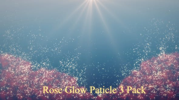 Thumbnail for Rose  Glow Particle