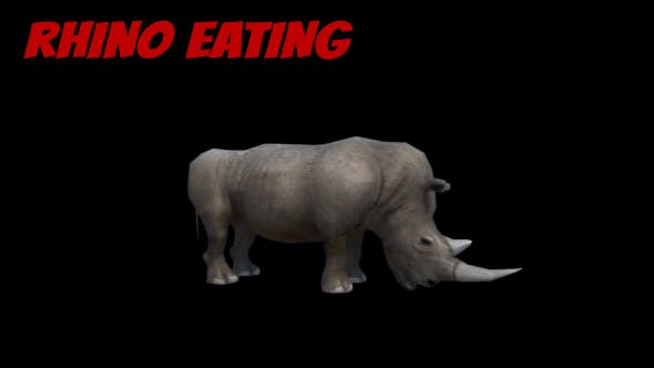 Thumbnail for 3D Rhino Eating