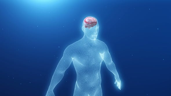 Thumbnail for Human Body with an Inflamed Brain