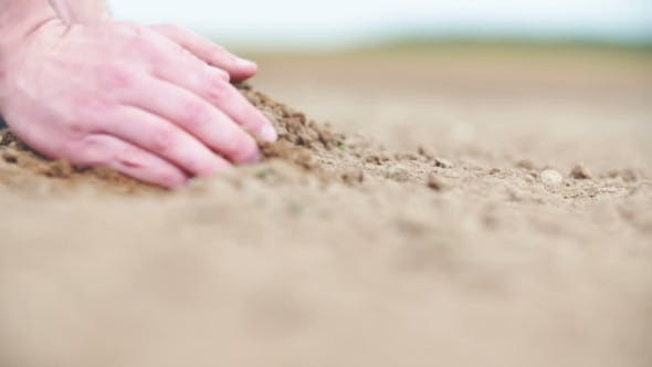 Thumbnail for Agricultural Background. Farmer Holding Soil in Hands