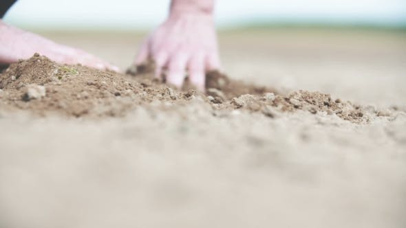 Thumbnail for Hands Checking Soil
