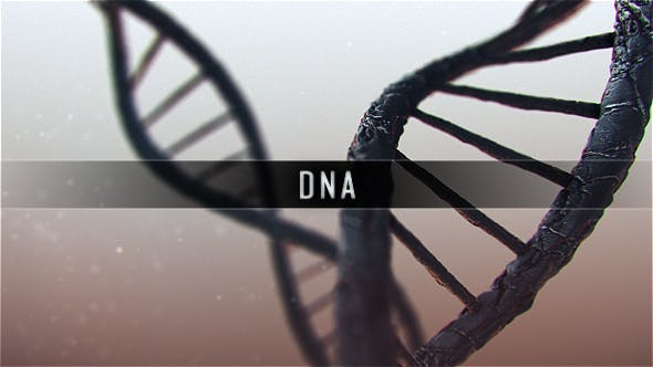 Thumbnail for DNA