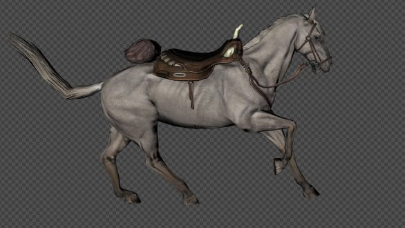 Thumbnail for Ein Pferd mit einem Sattel Run Und Walk Und Run Jump Land Und Run Stop Und Walk Back Pack 9 in 1