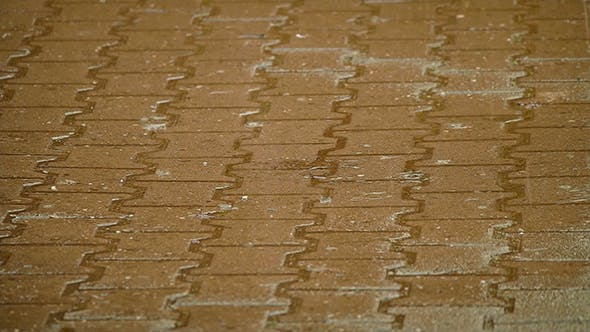 Thumbnail for Rainwater On Street