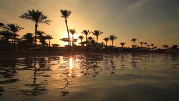 Sunset on the Sandy Beach, Red Sea