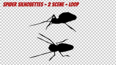Spider Silhouettes - 2 Scene