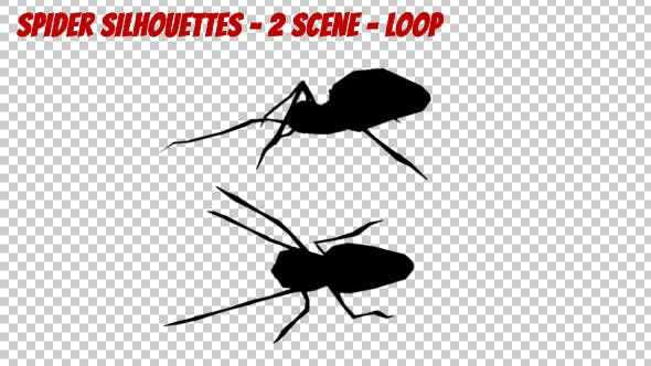 Thumbnail for Spider Silhouettes - 2 Scene