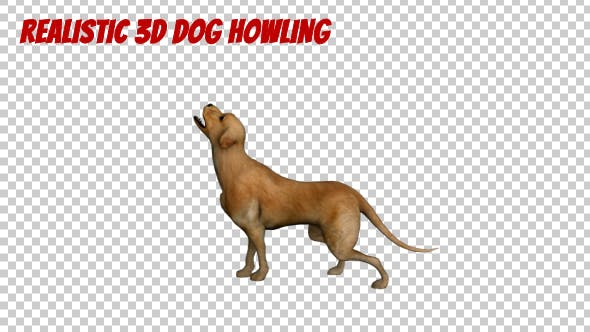 Thumbnail for Realistic 3D Dog Howling Animation