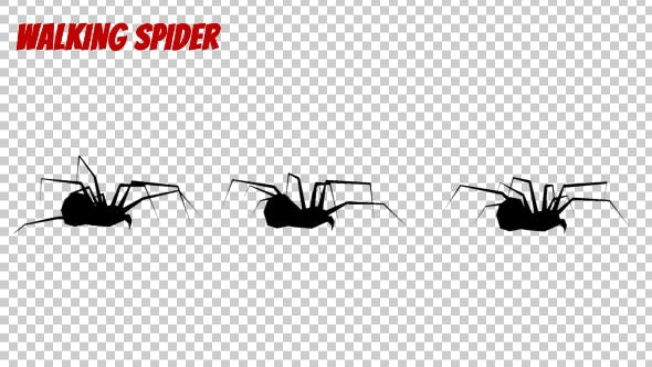 Thumbnail for Spider Silhouette - Walk