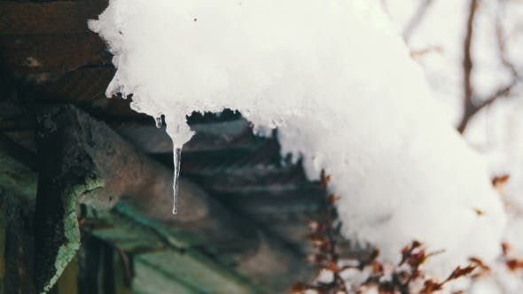 Thumbnail for Snow Melts From the Roofs and Drips Down in the Spring