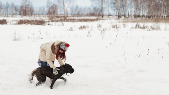 Thumbnail for Mother and a Daughter Playing with a Dog in Winter
