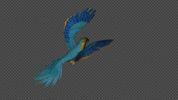 Thumbnail for Parrot Fly Walk Pack 4 In 1