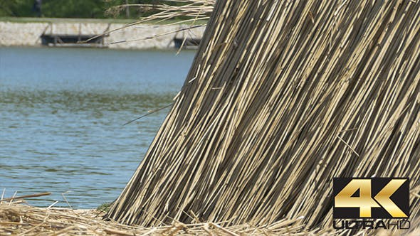 Thumbnail for Building Reed near Lake
