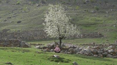 Meditation Under a Tree Among Stones
