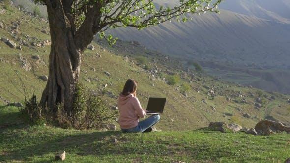 Thumbnail for Frau arbeitet an einem Laptop unter einem Baum