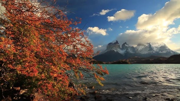 Thumbnail for Lake Pehoe at Dawn. Torres Del Paine, Chile