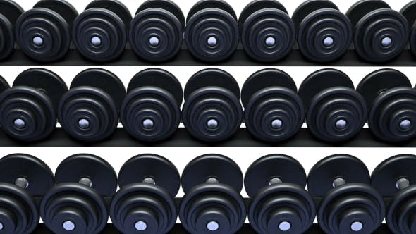 Thumbnail for Dumbbells on a Rack, Loop