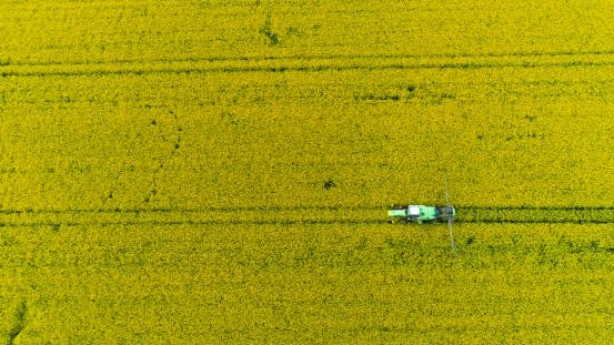 Thumbnail for Tractor in Field Spraying Rapeseed
