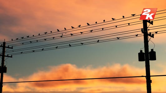 Thumbnail for Birds Standing On The Electric Pole-2