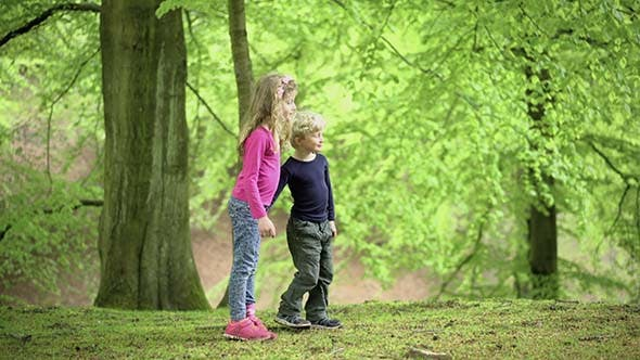 Childrens Walking On A Forest Path