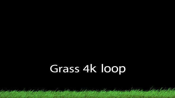 Thumbnail for Grass 2 Loop 4K